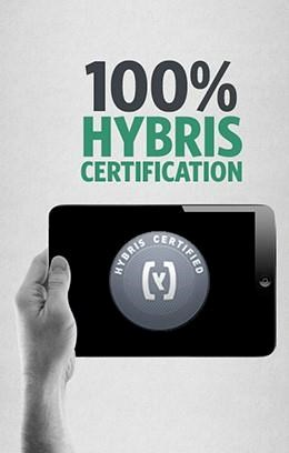 Greenlight achieves 100% hybris certification standards